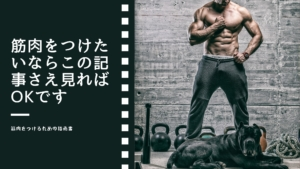 筋肉をつけたいならこの記事さえ見ればOKです