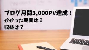ブログで月間3000PV達成!